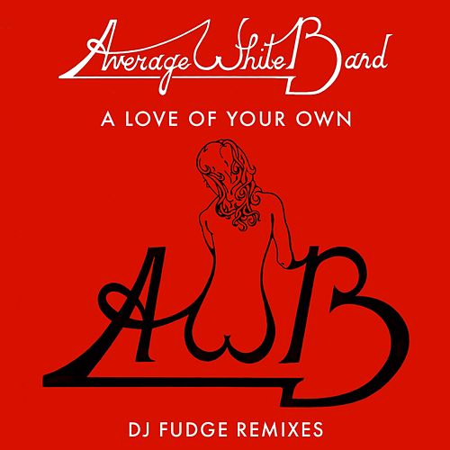 A Love of Your Own (DJ Fudge Remix) by Average White Band