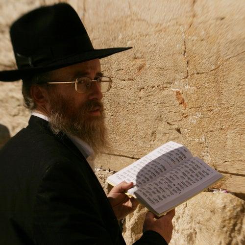 חוליה במלכודת: קאמבק ישראל by Block