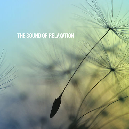 The Sound of Relaxation by Various Artists