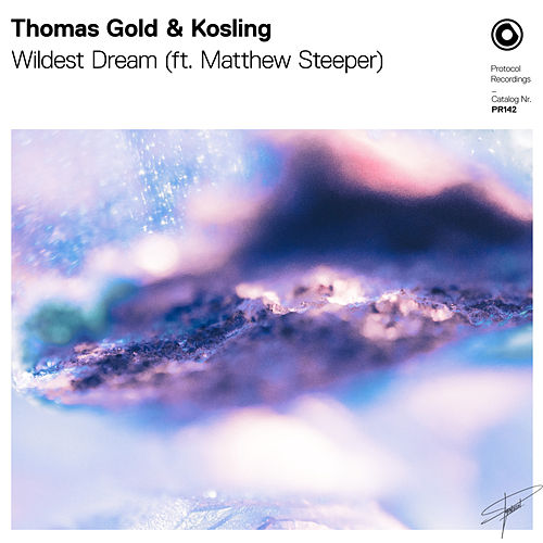 Wildest Dream von Thomas Gold
