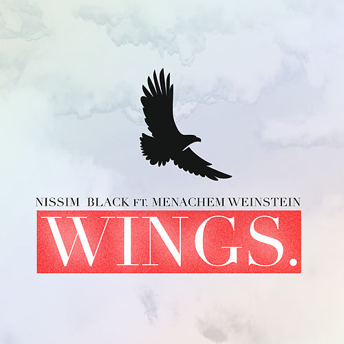Wings by Nissim Black