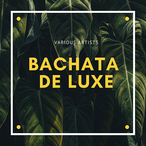 Bachata de Luxe de Various Artists