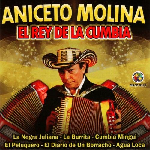 El Rey de la Cumbia de Aniceto Molina