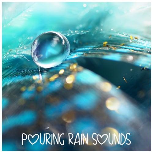 Pouring Rain Sounds by Rain Sounds (2)