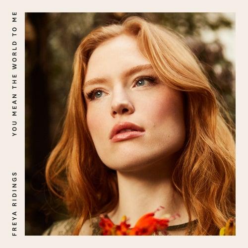 You Mean the World to Me (DRAMÄ Remix) by Freya Ridings