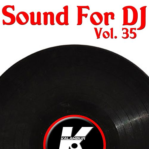 Sound For DJ Vol 35 de Various Artists