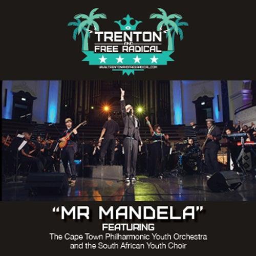 Mr. Mandela by Trenton