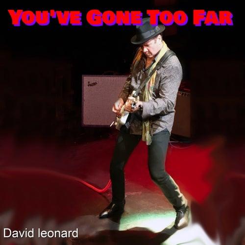 You've Gone Too Far by David Leonard