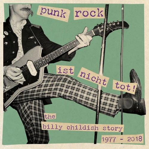 Punk Rock ist nicht tot de Various Artists