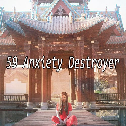 59 Anxiety Destroyer de Nature Sounds Artists