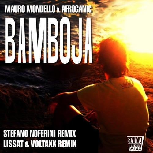 Bamboja von Mauro Mondello