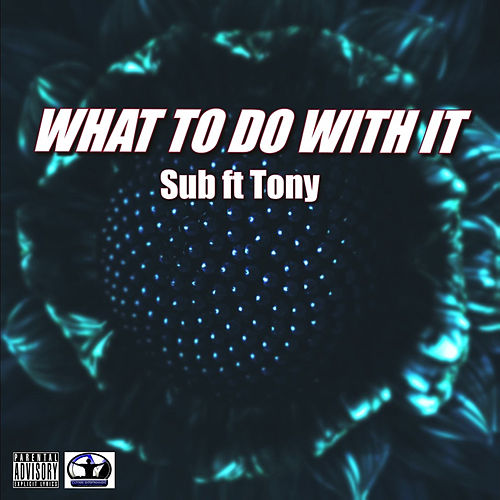 What to Do With It de .Sub