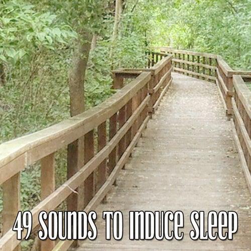 49 Sounds to Induce Sleep de Nature Sounds Nature Music (1)