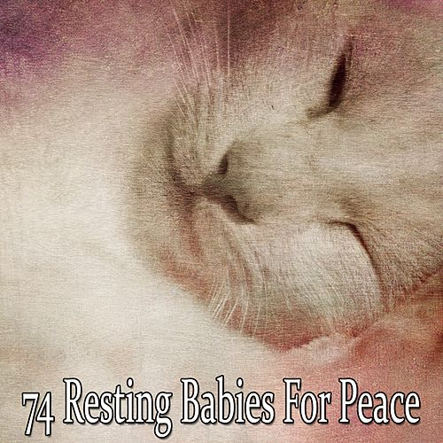 74 Resting Babies for Peace de Rockabye Lullaby