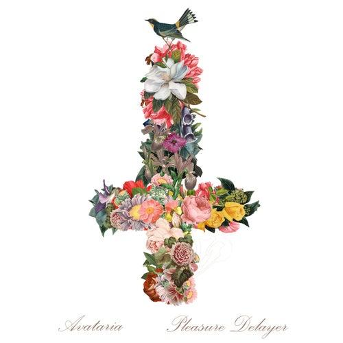 Pleasure Delayer by Avataria