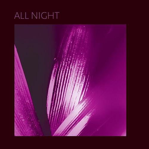 All Night by Pure Bathing Culture