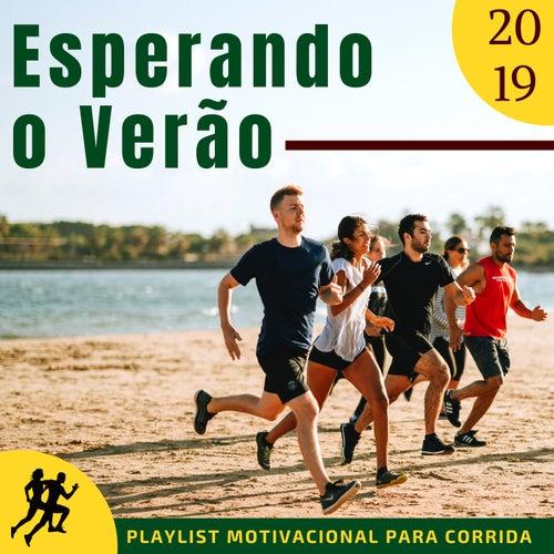 Esperando O Verão 2019 Melhores Músicas Edm Para De