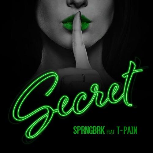 Secret (feat. T-Pain) von A-1