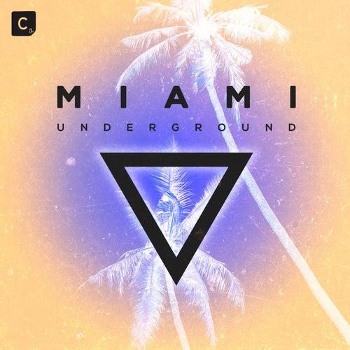 Miami Underground 2019 de Various Artists