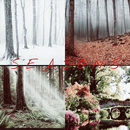 Seasons by Livefromthecity