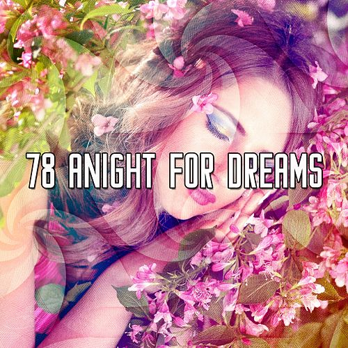 78 A Night for Dreams de Water Sound Natural White Noise