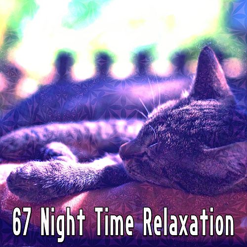 67 Night Time Relaxation by S.P.A