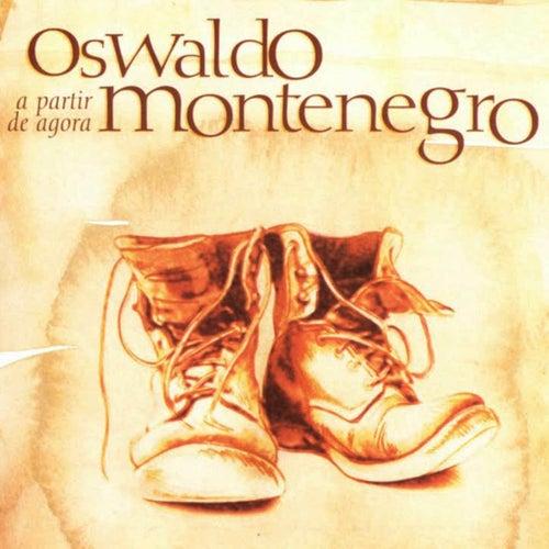 A Partir de Agora by Oswaldo Montenegro