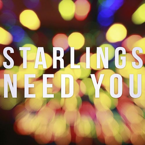 Need You by The Starlings