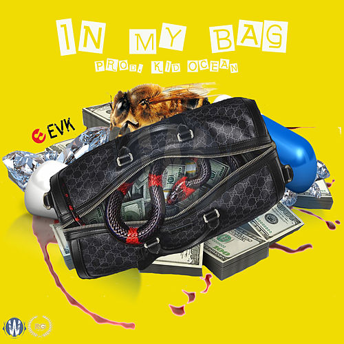 In My Bag by TheRealEvk