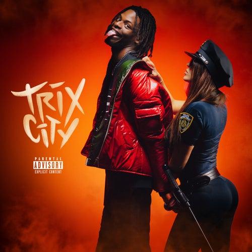 Trix City de Diddi Trix