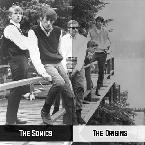 The Origins by The Sonics