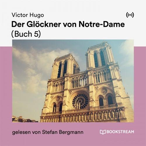 Der Glöckner von Notre-Dame (Buch 5) de Victor Hugo