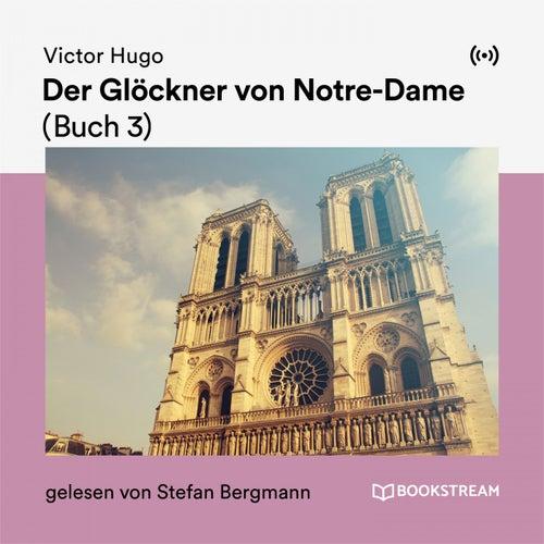 Der Glöckner von Notre-Dame (Buch 3) von Victor Hugo