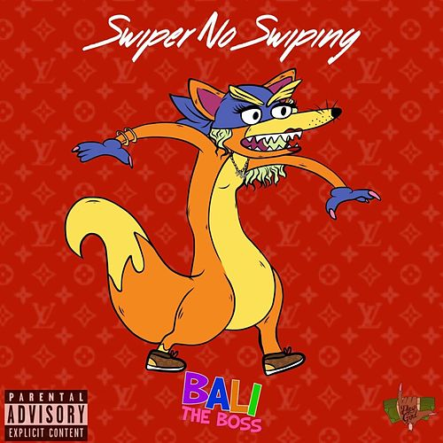 Swiper No Swiping by Bali Baby