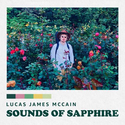 Running Scared von Lucas James McCain