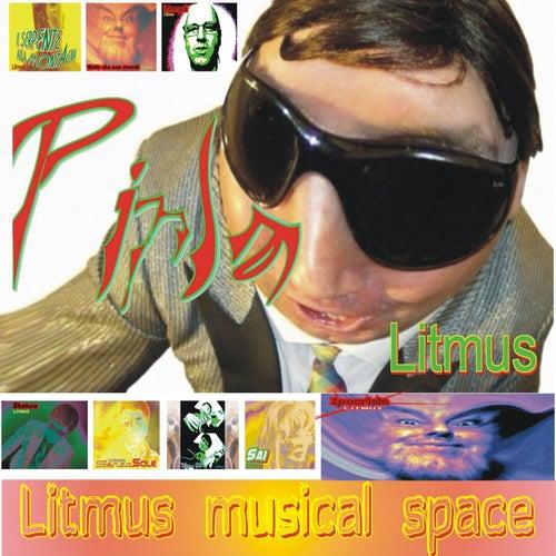 Litmus  Musical Space by Litmus