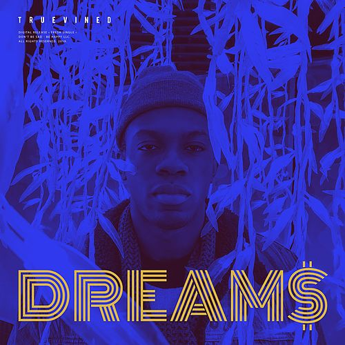 Dream$ by Truevined