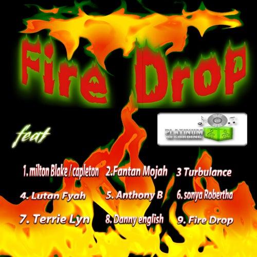 Fire Drop Riddim by Various Artists