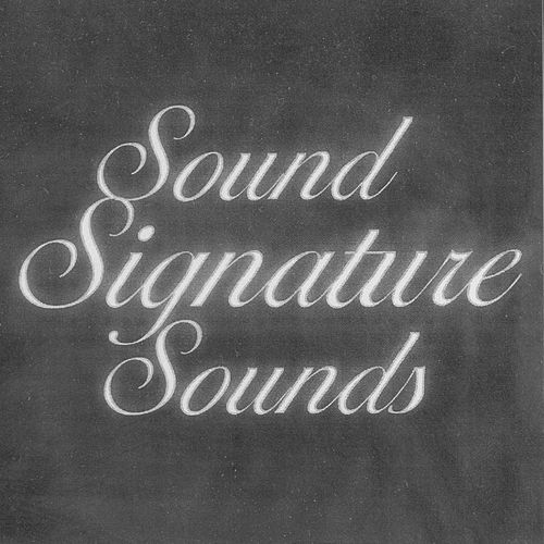 Sound Signature Sounds von Theo Parrish