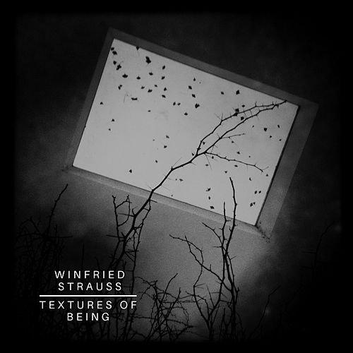 Textures of Being by Winfried Strauss