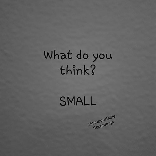 What Do You Think? by Small