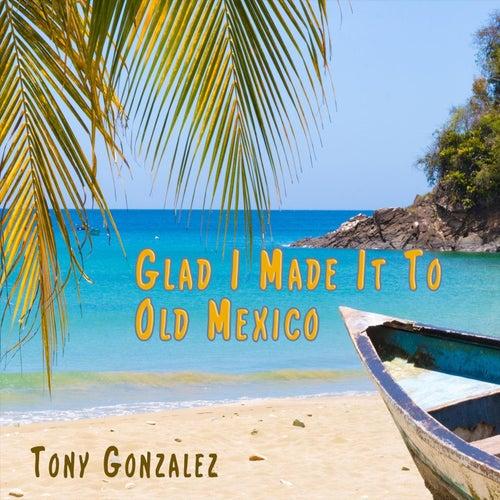 Glad I Made It to Old Mexico by Tony Gonzalez