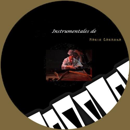 Instrumentales de Mario Carmona de Mario Carmona
