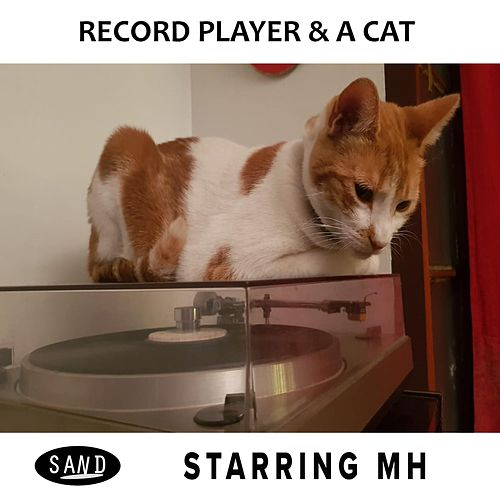 Record Player & a Cat by Starring MH