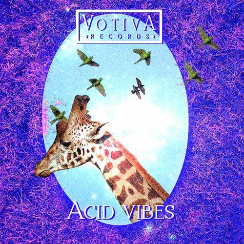 Acid Vibes von Various