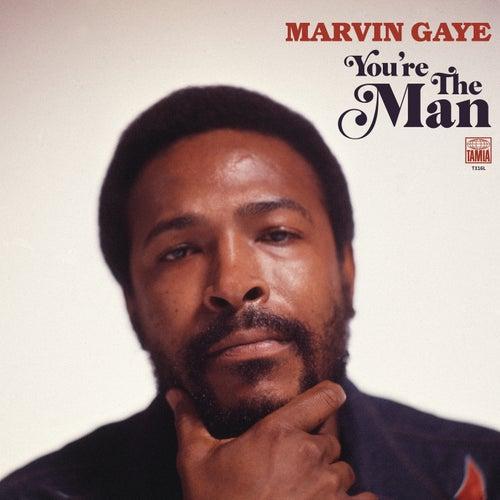 Symphony / My Last Chance (SalaAM ReMi Remix) by Marvin Gaye