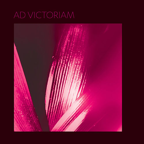Ad Victoriam by Pure Bathing Culture