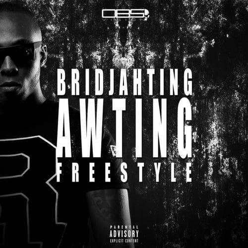 Awting Freestyle de Bridjahting