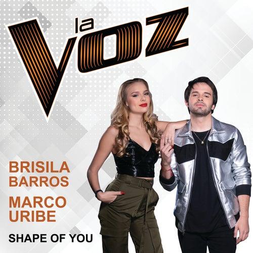 Shape Of You (La Voz US) von Brisila Barros
