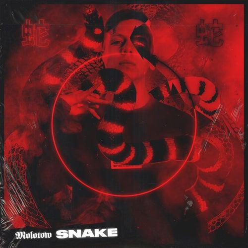 Snake de Molotov